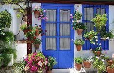 En los barrios mas antiguos como San Lorenzo y San Basilio, Alcazar Viejo, Judería, Santa Marina y San Andres, se encuentran la mayoria de patios.