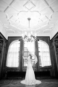 Bridal Posing Bridal Portrait Poses, Bridal Poses, Bridal Shoot, Every Girl, Wedding Stuff, Wedding Photography, Artwork, Dress, Inspiration