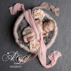 greys and floral by #artbylaw newborn photography