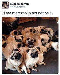 La esposa de Javier Duarte hizo planas para atraer la fortuna y se convirtieron en un meme