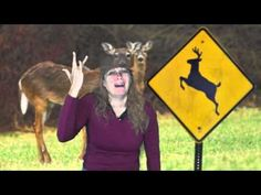 "This audio original and full clip from Y94 Playhouse Fargo, ND radio station was too funny to not find a way for more people to hear it so thus, this video. A lady asks for help getting deer crossing signs moved to lower traffic areas. ""The government can guide deer to lower traffic areas"" ha! ha! ha! ha! ha! Kudos to Y94 Playhouse and Donna for..."
