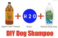 My favorite diy dog shampoo . I add some mint and lavendar Young Living Essential Oils to mine. Homemade Dog Shampoo, Best Dog Shampoo, Puppy Shampoo, Natural Dog Shampoo, Diy Shampoo, Itchy Dog, Stinky Dog, Shih Tzus, Young Living