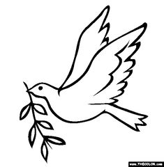 28 Best Dove Drawings images in 2014 | Dove drawing, Peace