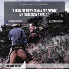 Me obligaron... ____________________ #teamcorridosvip #corridosvip #corridosybanda #corridos #quotes #regionalmexicano #frasesvip #promotion #promo #corridosgram - http://ift.tt/1HQJd81