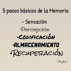 """La Memoria Humana / psicología/ Psicofisiologia/La Memoria / memoria Largó plazo / memoria Corto plazo/ memoria Sensorial/ memoria del Trabajo / psicólogos / salud mental /   Los 5 pasos básico    De la memoria son :  •Sensación  •percepción •Codificación  •Almacenamiento  •Recuperación  Aunque muchos dicen que sólo son 4 o 3 los pasos omitiendo nada más la """"Sensacion""""  y """"Percepción"""" ¿Por qué ?"""
