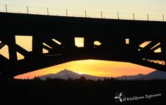 The story of the historic Crooked River Railroad Bridge in Central Oregon.
