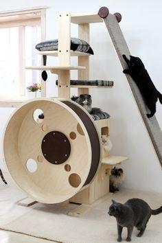 Création d'un arbre à chat maison : C'est possible !