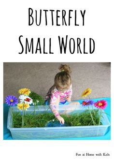 Simple Small Worlds: Butterfly World | FUN AT HOME WITH KIDS