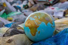 L'éco-anxiété ou solastalgie, le nouveau mal du siècle - Nature d'ici et d'ailleurs Earth Day, Planet Earth, Globe, Environment, Nature, Concept, Bottled Water, Palm Oil