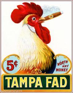 1905-Tampa-Fad-Rooster-Chicken-Vintage-Cigar-Box-Label-Advertisement-Art-Print