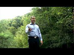 Manu Negrea - Nu vă-ngrijorați - YouTube Youtube, Blog, Blogging, Youtube Movies