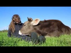 Grateful Bull Snuggles Up To His Rescuer Just Like A Big Puppy