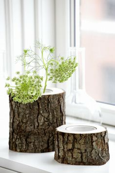 Tree Trunk Vases >> So pretty!!