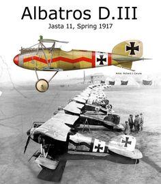 Albatros D.III Jasta 11 Spring 1917 ~ BFD
