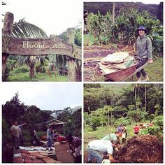 Join Down to Earth team members on a volunteer farm work day to help Ho'oulu 'Aina a 100 acre non-profit farm that is part of Kokua Kalihi Valley. We'll be harvesting weeding and planting new gardens.  This event is free but registration required due to l