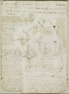 Leonardo da Vinci, 1452-1519, Italian, Notes on reproduction, with sketches of a foetus in utero, etc., c.1511.  Pen and ink, with some offset red chalk.  Royal Collection Trust, Windsor.