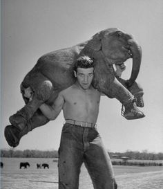 Butch the baby elephant being held by Ben Davenport, owner of the Dailey Circus - (Cornell Capa—The LIFE Picture Collection/Getty Images) Old Circus, Vintage Circus, Night Circus, Vintage Men, Vintage Clothing, Circo Vintage, Vintage Magazine, Circus Performers, Gym Humor