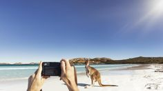 Image result for tourism campaign