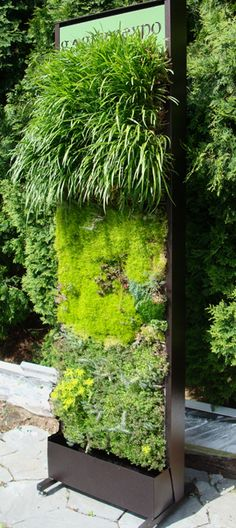 Green Living Technologies » Green Living Walls