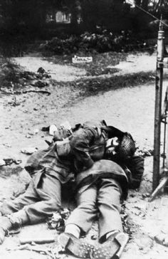 Dead British soldiers killed in the battle for Arnhem 17 - 25 September 1944