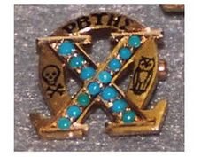 Uniquely Striking ChiO Badge with Turquoise