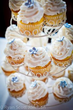 pretty!        #cupcakes #photography