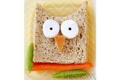 cute lunch box owl