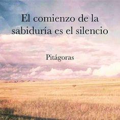 The Nicest Pictures: El comienzo de la sabiduría es el silencio