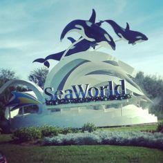 Sea World Orlando Been There