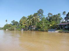 River, Abai, Borneo