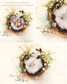 Easter Wreath With Flower - Beautiful Digital background Newborn Photography Prop download