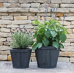 Provencal Planters - Tapered Sides