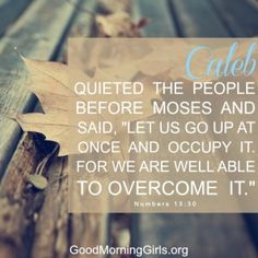 """Caleb quieted the people before Moses and said, """"Let us go up at once and occupy it. For we are well able to overcome it."""" Numbers 13:30"""