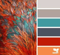 feathered hues color palette from Design Seeds Colour Pallette, Color Palate, Colour Schemes, Color Combos, Color Patterns, Paint Schemes, Turquoise Color Schemes, Best Color Combinations, Grey Palette