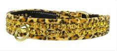 Jungle King Leopard Dog Collar
