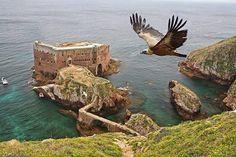 Forte de São João Batista, Berlengas Portugal...