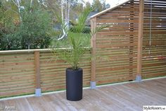 staket,palm Backyard Projects, Outdoor Projects, Garden Sitting Areas, Spa Lounge, Easy Deck, Home Porch, Deck Railings, Balcony Design, Decks And Porches