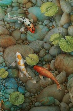 Terry Gilecki is a highly aclaimed painter of the beautiful Koi fish and the surreal world they live in. Koi Fish Drawing, Fish Drawings, Koi Art, Fish Art, Koi Painting, Koi Fish Pond, Fish Ponds, Realistic Paintings, Beautiful Fish