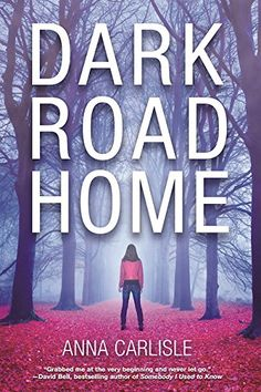Review _ Dark Road Home: A Gin Sullivan Mystery by Anna Carlisle