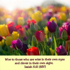 Isaiah 5:21 NIV  Woe to those who are wise in their own eyes and clever in their own sight.
