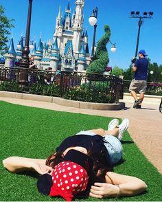 Not my photo - Disney World Hub Grass