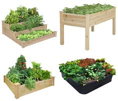 Raised garden bed. if you are interested to buy please visit the link http://gardeningtoolkit.blogspot.com/2016/07/why-using-raised-garden-bed-in-gardening.html