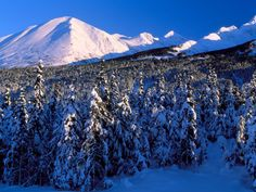 Kenai Mountains, Canyon Creek, Alaska