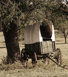 Old covered wagon - rural Montana Westerns, Old West, Horse Drawn Wagon, Wooden Wagon, Calamity Jane, Old Wagons, Into The West, Covered Wagon, Chuck Wagon