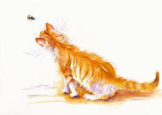 Bee Curious. GreyPepperArt. A big marmalade kitten is intrigued by a buzzy flyer...