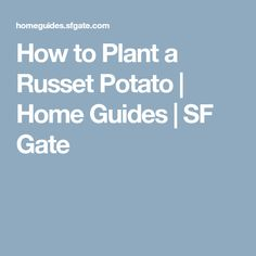 How to Plant a Russet Potato | Home Guides | SF Gate