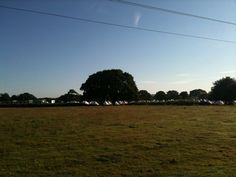 Camping Town at Holton lee, Poole, UK