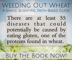 Grace-Filled-Moments : Weeding Out Wheat {Book Review}