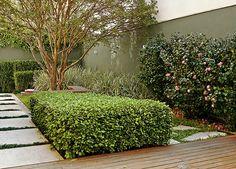 Ter um pedaço de verde virou realidade para os moradores dos três projetos a seguir. Com áreas entre 14 m² e 115 m², eles esbanjam charme