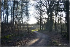 Rozengaarderweg, Hummelo (Gld.)